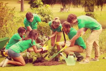 Participación y voluntariado